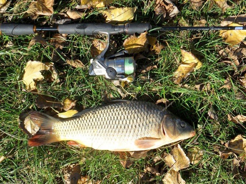 Рыбалка Белореченский район